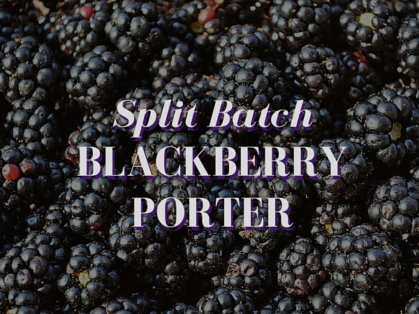 Split Batch Blackberry Porter Recipe