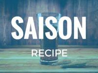 Saison Recipe