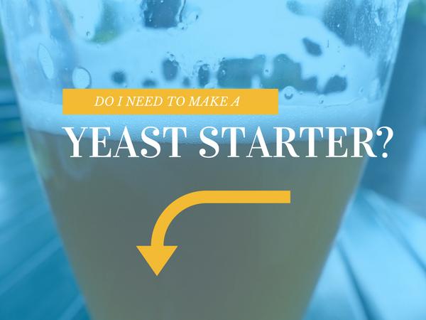Making A Yeast Starter