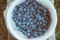 Blueberry Wine Recipe