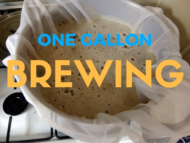 The Rise Of One Gallon Beer Making