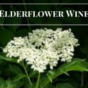 Elderflower Wine Recipe