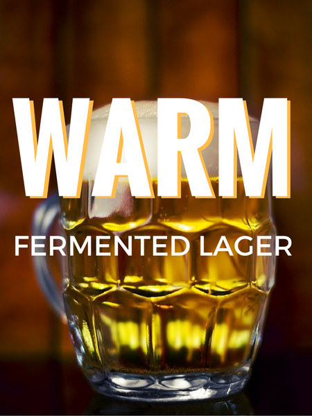 Warm Fermented Lager