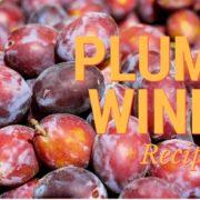 Plum Wine Recipe