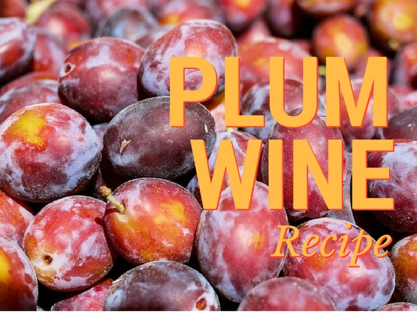 Simple & Easy Plum Wine Recipe