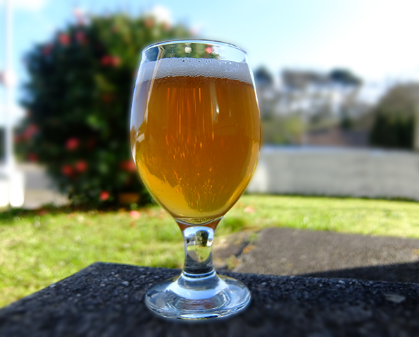 NEIPA A Perfect Beer To Experiment With – New England IPA Recipe