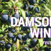 Damson Wine recipe